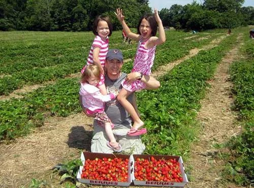 family-picking-strawberries