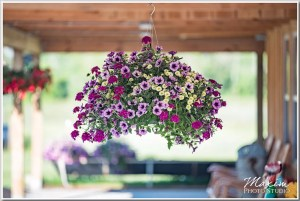 Mothers Day Gift Ideas: Hanging Basket