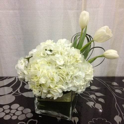 Hydrangea and Tulips in 5 in opening container