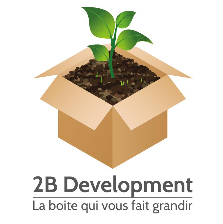 Logo – 2B Development