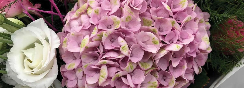 blossom branch florist 1