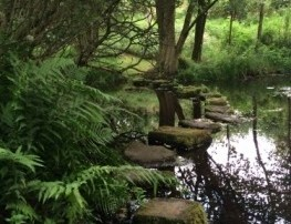 stepping stones across pond