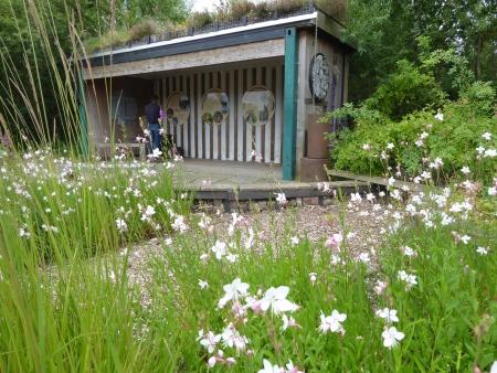 Nigel_Dunnett_rain_garden
