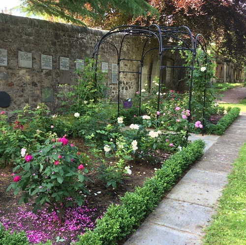 rose_garden_design_Edinburgh