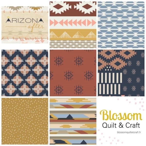 Arizona After_April Rhode_ Art Gallery Fabrics_Blossom Quilts