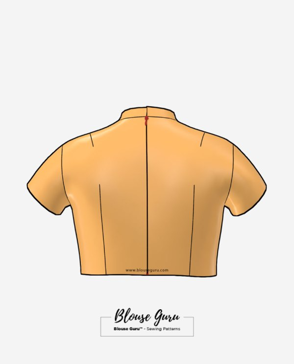 Blouse Guru Collar Neck Back Open Design 1 Back