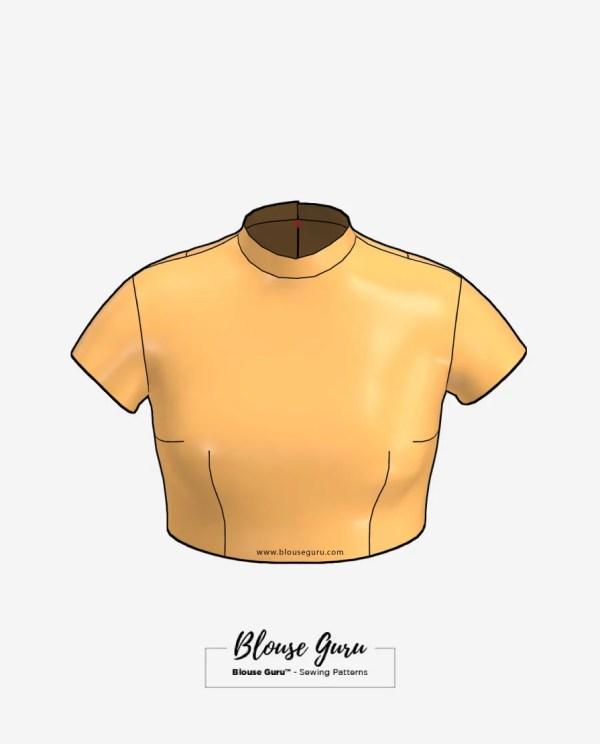 Blouse Guru Collar Neck Back Open Design 1 Front