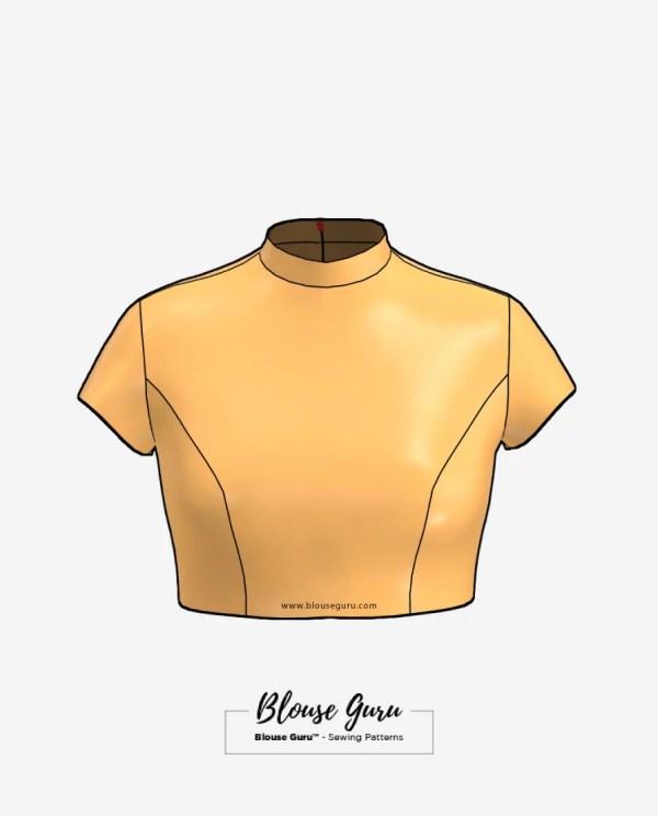 Blouse Guru Collar Neck Back Open Design 3 Front
