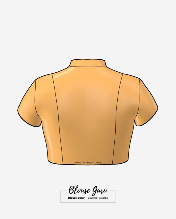 Blouse Guru Collar Neck Front Open Design 4 Back