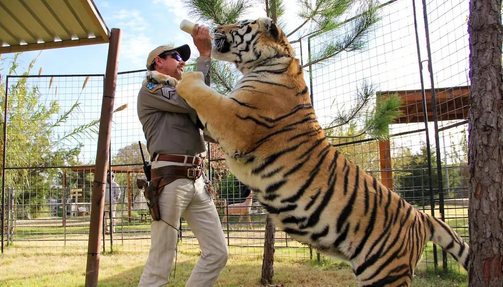 "L'épisode bonus de ""Tiger King"" sera diffusé en première le 12 avril"