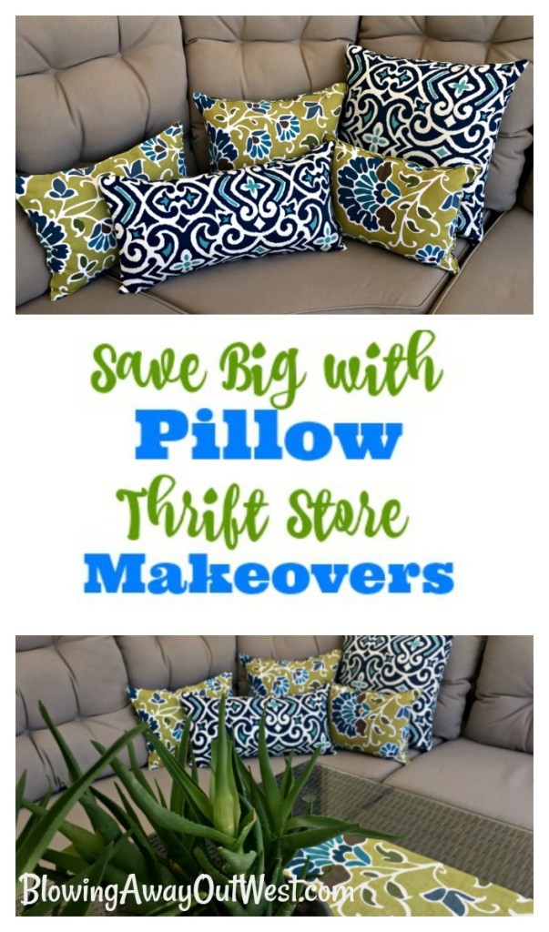 Pillow Thrift Store