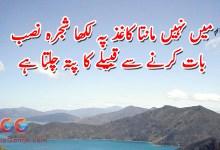 Photo of Main Nahi Manta Kaghaz Pe Likha Shajra Nasab