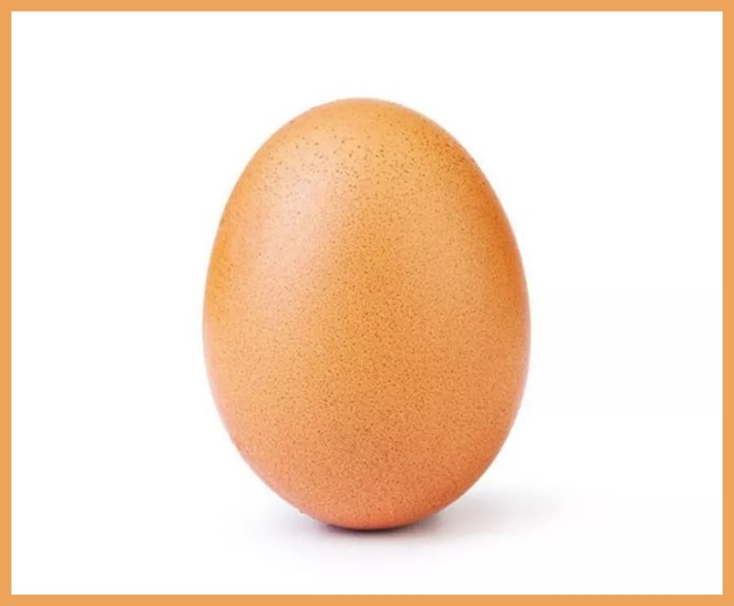 The World Record Egg On Instagram