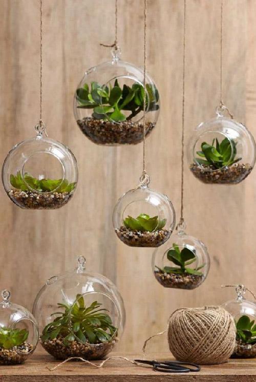Best Indoor Gardening Ideas