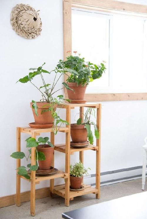 DIY Indoor Plant Stands