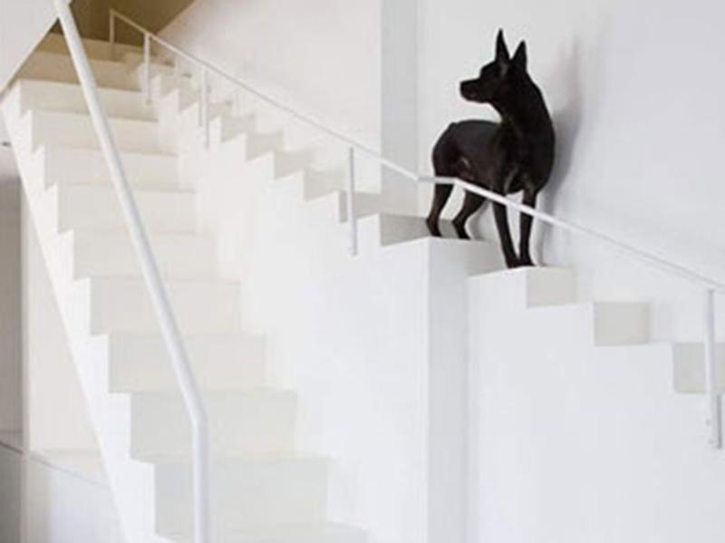 Best Modern Stairs