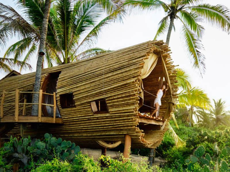 Amazing Sunset Treehouse