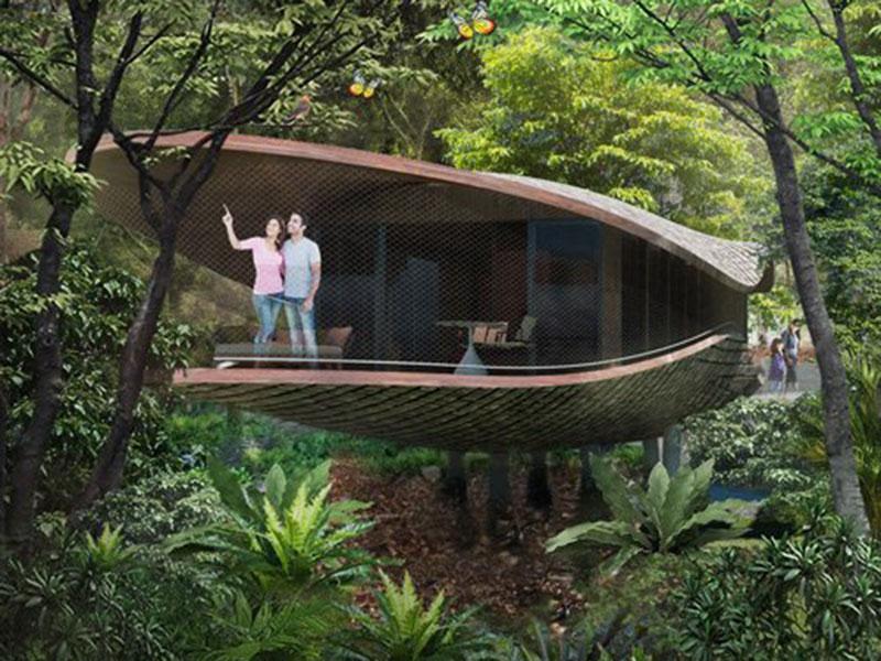 Seedpod Shaped Tree House