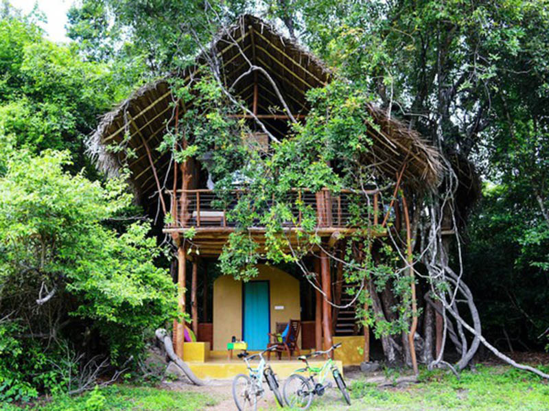 The Best Tree House Design