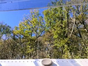 Blick aus dem Womo-Dachfenster: Hinter uns der Nationalpark Eifel.