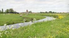 Das Waterland mit seinen vielen Kanälen