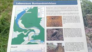 Lebensraum Buntsandsteinfelsen