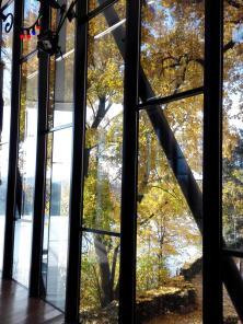 Blick aus dem Artrium des Museums, das direkt am Rhein gelegen ist