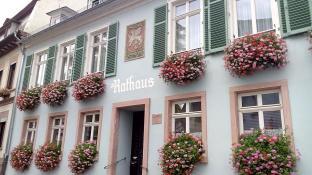 Das Rathaus von Erbach