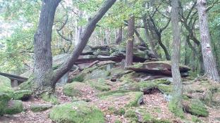 Felsformation im angrenzenden Wald
