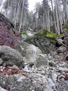 Wasserfall hinunter zum Kleinen Alpsee