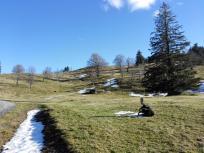 Die ersten Flecken mit Schnee, Doxi rollt sich gleich durch
