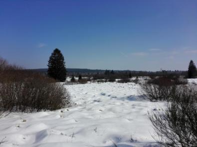 Schnee und Sonne, was will man mehr?