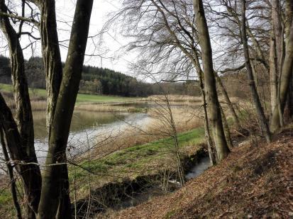 Teich im Weiherseetal