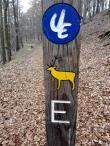 Wandermarkierung für den Urweltpfad