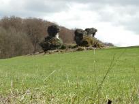 Markante Felsen bei Sanspareil