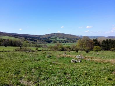 Wiesen auf dem Weg zum Roten Moor