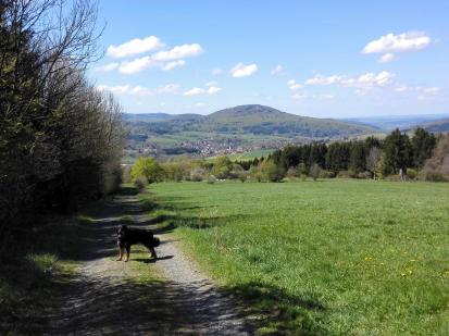 Beim Abstieg vom Roten Moor nach Gersfeld