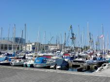 Blick in den neuen Westhafen