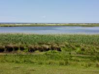 Blick über den Süßwassersee. Dahinter die Dünen und die Ostsee.