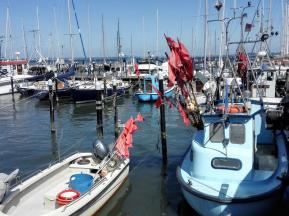 Fischerboote im Hafen