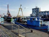Fischkutter im Hafen von Sassnitz