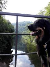 An unserem Startpunkt auf der Autobrücke über die Wupper