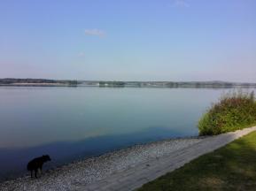 Doxi testet die Wasserqualität