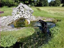 Wasserlauf in Unterbürg