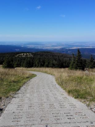 Der alte Kolonnenweg der DDR-Grenztruppen