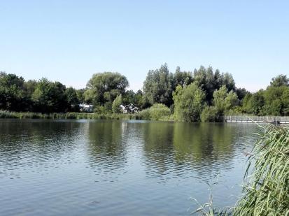 Der Womo-Stellplatz grenzt bis ans Wasser