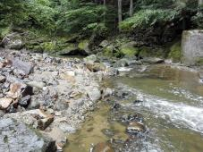 Hier hat der Fluss viel Schotter angeschwemmt