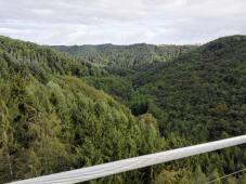 Blick von der Brücke ins Mösdorfer Bachtal