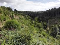 Beim Abstieg in das nächste Tal