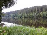 Der See wird von ausgedehnten Fichtenwäldern flankiert